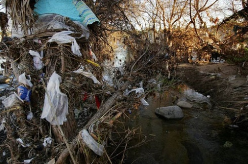 Releases #310 and 6,901 cross-indexed to homeless sorrow, hopeless boldness, lives swept into the brush by the flood, deposited in the concrete embankments of the Los Angeles River, as you can see here. Separated one reality from another by the membrane of the eyelid.