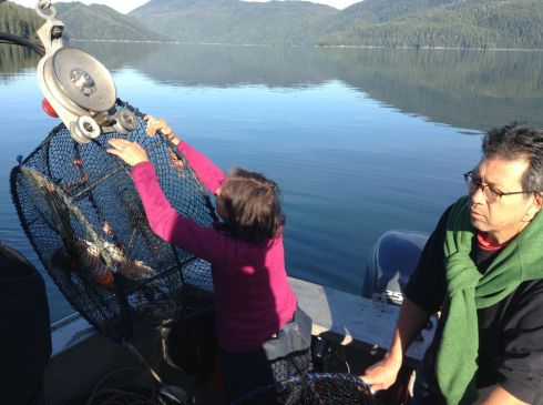 shrimping anchor pass
