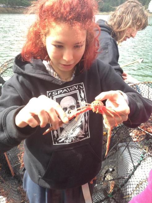 shrimping anchor pass1