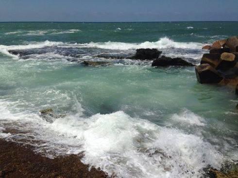 """Via the agitated sea, I hereby transmit communiques and love letters to your shores, Gaza."" -Rheim Alkadhi"