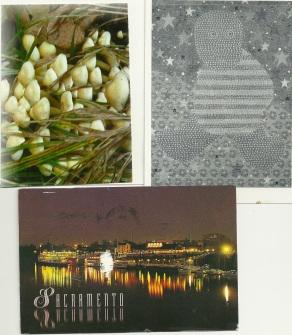 junepostcards4